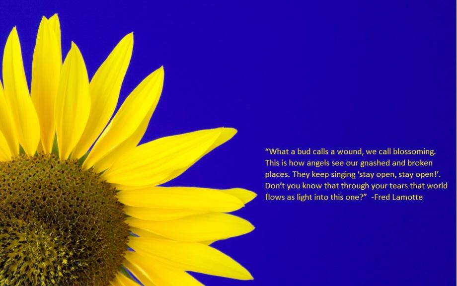 Maureen Kane mental Health Counseling Therapy Bellingham WA photo: sunflower